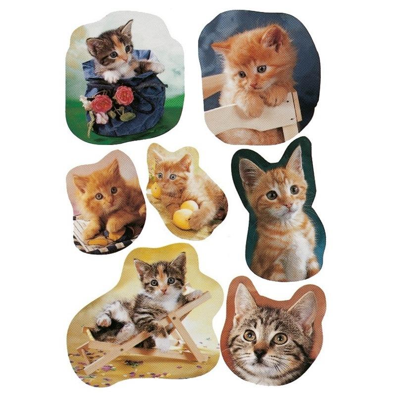 21x Katten-poezen dieren stickers