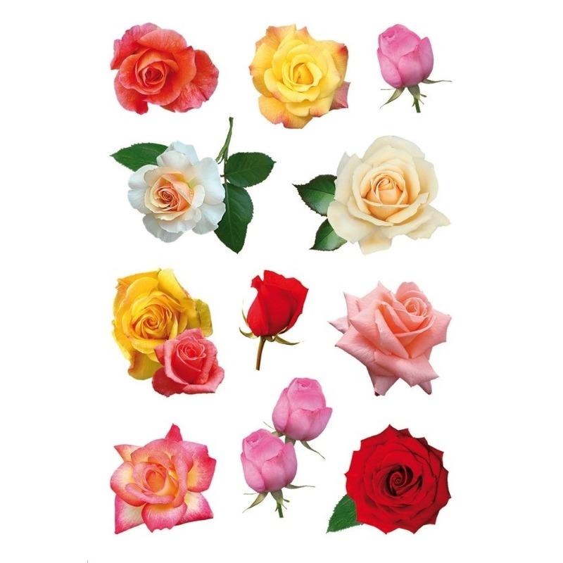 33x Gekleurde rozen bloemen stickers