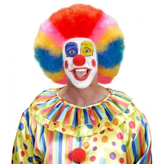 /feest-artikelen/carnavalskleding/beroepen-kostuums/clown-kostuums/clown-accessoires