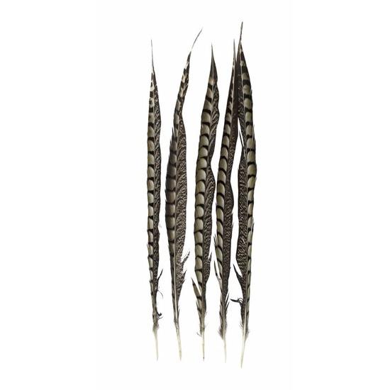 Lady Amherst fazant veren 50 cm 5 stuks
