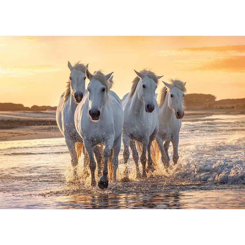 Poster kudde witte paarden op het strand 84 x 59 cm