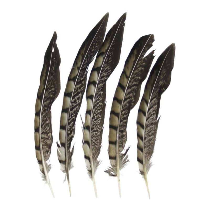 Prins carnaval fazanten veren 18 cm 5 stuks